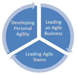 agile-leadership-model